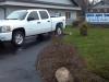 2011-12-30_10-03-17_531-jpg-2011-chev-truck